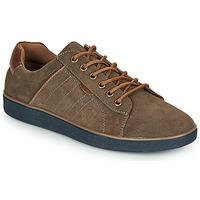鞋子 男士 球鞋基本款 André ELTON 卡其色