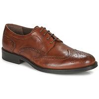 鞋子 男士 德比 André NORY 棕色