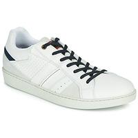 鞋子 男士 球鞋基本款 André SNEAKSHOES 白色