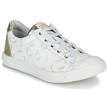 鞋子 女孩 球鞋基本款 GBB MATIA 白色 / 金色