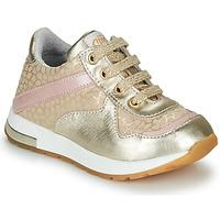 鞋子 女孩 球鞋基本款 GBB LELIA 金色 / 米色