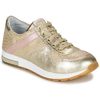 鞋子 女孩 球鞋基本款 GBB LELIA 米色 / 金色