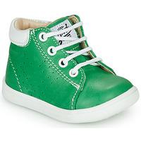 鞋子 男孩 高帮鞋 GBB FOLLIO 绿色