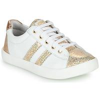 鞋子 女孩 球鞋基本款 GBB MAPLUE 白色 / 金色
