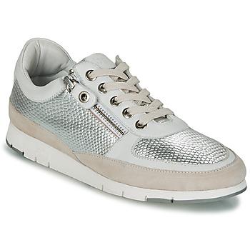 鞋子 女士 球鞋基本款 TBS CAVANNA 银色 / 米色