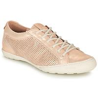 鞋子 女士 球鞋基本款 Palladium 帕拉丁 GRACIEUSE ALX 玫瑰色