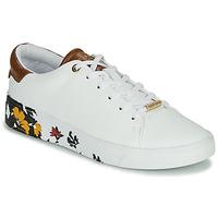 鞋子 女士 球鞋基本款 Ted Baker 泰德贝克 WENIL 白色