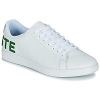 鞋子 男士 球鞋基本款 Lacoste CARNABY EVO 120 7 US SMA 白色 / 绿色