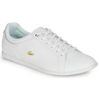 鞋子 女士 球鞋基本款 Lacoste REY LACE 120 1 CFA 白色 / 金色