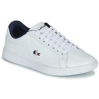 鞋子 女士 球鞋基本款 Lacoste CARNABY EVO TRI 1 SFA 白色 / 海蓝色 / 红色