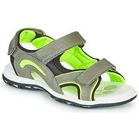 鞋子 男孩 运动凉鞋 Chicco CEDDER 灰色 / 绿色