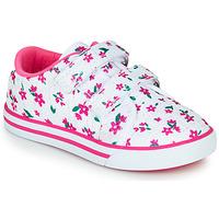 鞋子 女孩 球鞋基本款 Chicco FRANCY 白色 / 玫瑰色