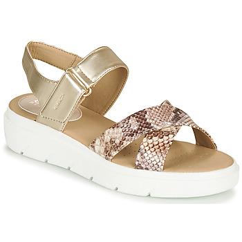 鞋子 女士 凉鞋 Geox 健乐士 D TAMAS 金色 / 灰褐色