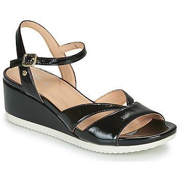 鞋子 女士 凉鞋 Geox 健乐士 D ISCHIA 黑色