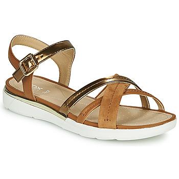 鞋子 女士 凉鞋 Geox 健乐士 D SANDAL HIVER 金色 / 棕色