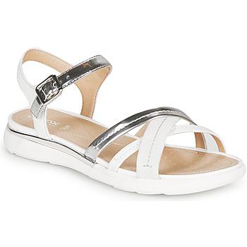 鞋子 女士 凉鞋 Geox 健乐士 D SANDAL HIVER 银灰色 / 白色