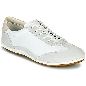 鞋子 女士 球鞋基本款 Geox 健乐士 D VEGA 白色 / 灰色