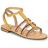 鞋子 女士 凉鞋 Geox 健乐士 D SOZY 黄色 / 棕色 / 金色