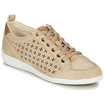 鞋子 女士 球鞋基本款 Geox 健乐士 D MYRIA 米色