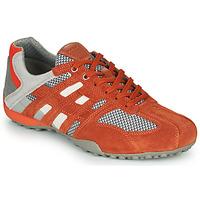 鞋子 男士 球鞋基本款 Geox 健乐士 UOMO SNAKE 红色 / 灰色