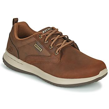 鞋子 男士 球鞋基本款 Skechers 斯凯奇 DELSON ANTIGO 棕色
