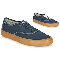 鞋子 男士 球鞋基本款 Element PASSIPH 蓝色