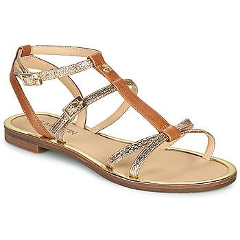 鞋子 女士 凉鞋 JB Martin 1GRIOTTES 棕色 / 金色