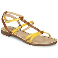 鞋子 女士 凉鞋 JB Martin 1GRIOTTES 黄色 / 棕色