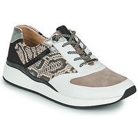 鞋子 女士 球鞋基本款 JB Martin 1KALIO 白色 / 米色 / 黑色