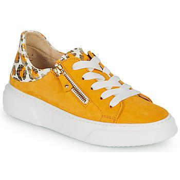 鞋子 女士 球鞋基本款 Gabor 嘉宝 KURUKU 黄色