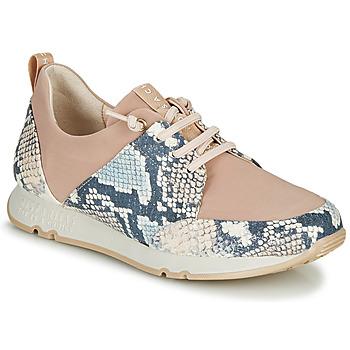 鞋子 女士 球鞋基本款 Hispanitas KIOTO 米色 / 蓝色