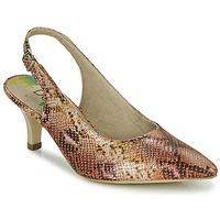 鞋子 女士 高跟鞋 Dorking MOON 棕色