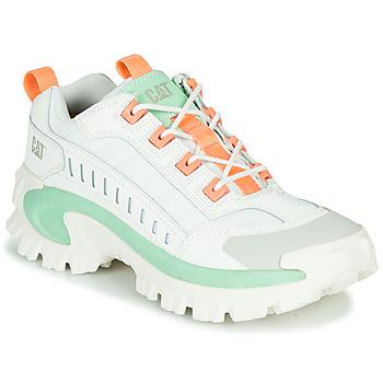 鞋子 男士 球鞋基本款 Caterpillar INTRUDER 白色 / 绿色