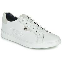 鞋子 男士 球鞋基本款 Base London BUZZ 白色