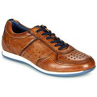 鞋子 男士 球鞋基本款 Bugatti TOMEO 棕色