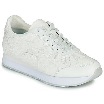 鞋子 女士 球鞋基本款 Desigual GALAXY LOTTIE 白色