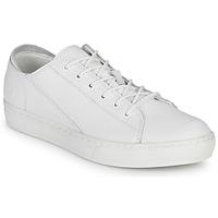 鞋子 男士 球鞋基本款 Timberland 添柏岚 ADV 2.0 CUPSOLE MODERN OX 白色