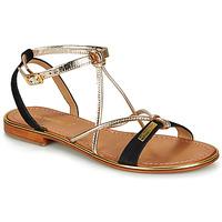 鞋子 女士 凉鞋 Les Tropéziennes par M Belarbi HIRONBUC 黑色 / 金色