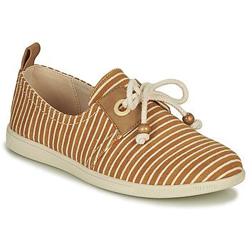 鞋子 女士 球鞋基本款 Armistice STONE ONE 棕色
