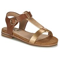 鞋子 女士 涼鞋 Armistice RIO SUNSET 棕色 / 金色