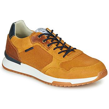 鞋子 男士 球鞋基本款 Bullboxer TANIA 黃色