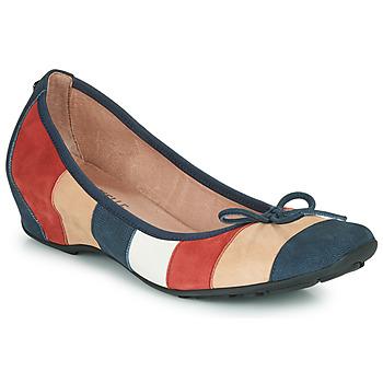 鞋子 女士 平底鞋 MAM'ZELLE FLUTE 蓝色 / 米色 / 波尔多红