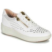 鞋子 女士 球鞋基本款 Stonefly 斯通富莱 ROCK 10 白色