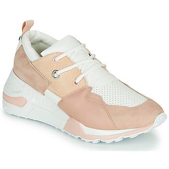 鞋子 女士 球鞋基本款 Steve Madden 史蒂夫·马登 CLIFF 玫瑰色