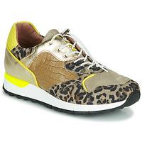 鞋子 女士 球鞋基本款 Mjus CAST 卡其色 / Leopard