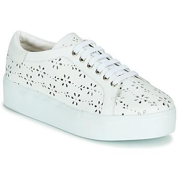 鞋子 女士 球鞋基本款 Cristofoli NALA 白色