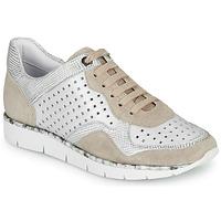 鞋子 女士 球鞋基本款 Regard JARD V4 CROSTA P STONE 白色 / 米色