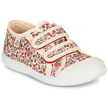 鞋子 女孩 球鞋基本款 Citrouille et Compagnie GLASSIA 浅米色 / 多彩