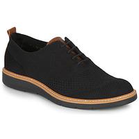 鞋子 男士 德比 Primigi (adulte) 5106700 黑色
