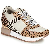 鞋子 女士 球鞋基本款 Gioseppo BIKANER 米色 / 棕色